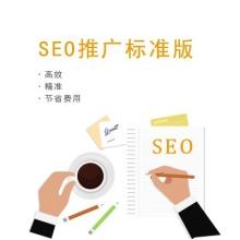 SEO推广标准版